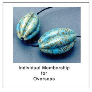 membership individual overseas